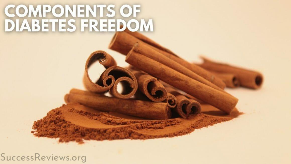 Diabetic Freedom Program components of diabetes freedom
