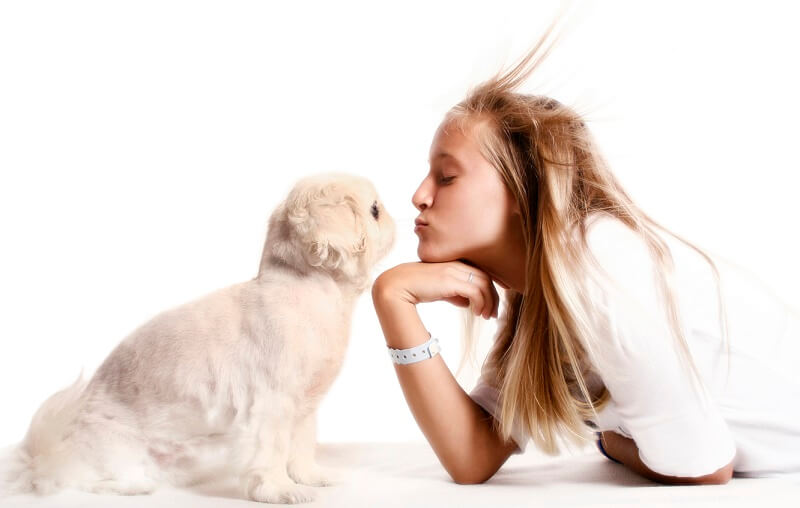 kiss a dog