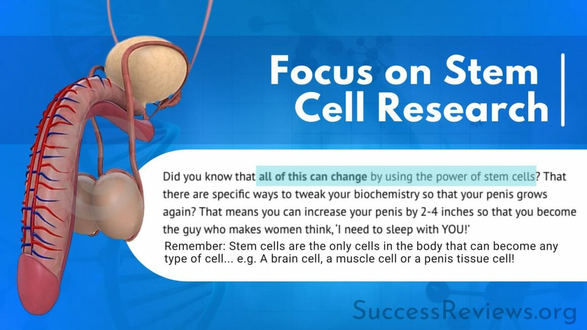 Penis Enlargement Remedy Focus on Stem Cell Research
