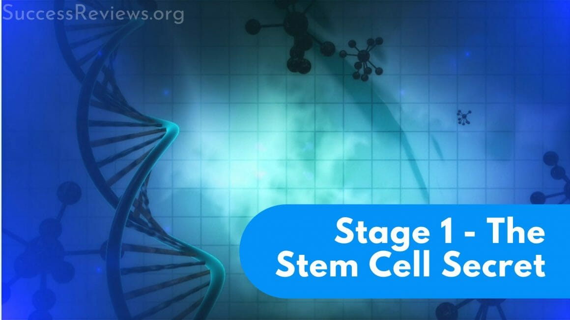 Penis Enlargement Remedy Stage 1 The Stem Cell Secret