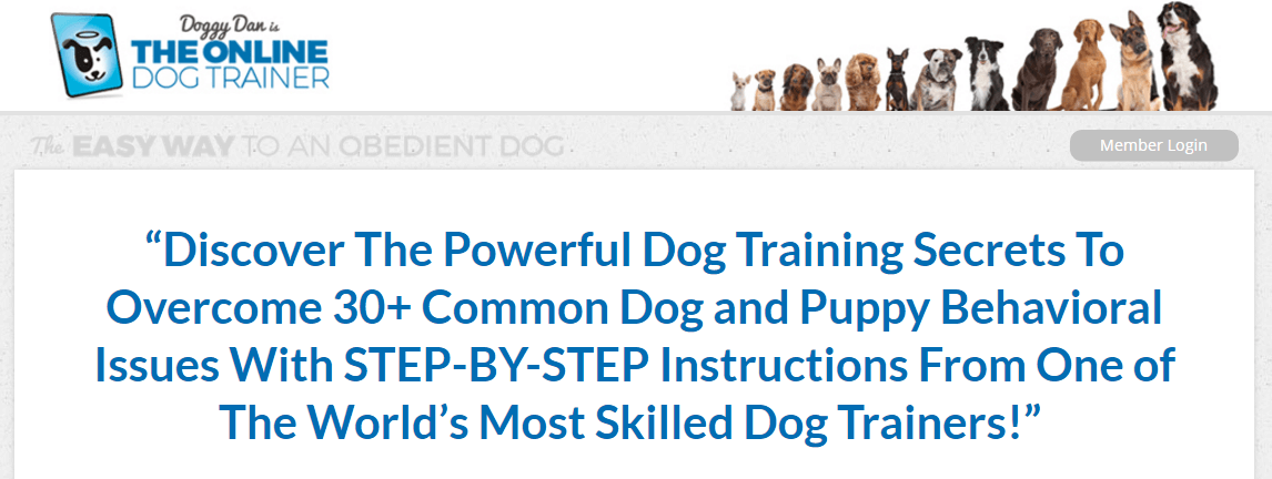 the-online-dog-trainer
