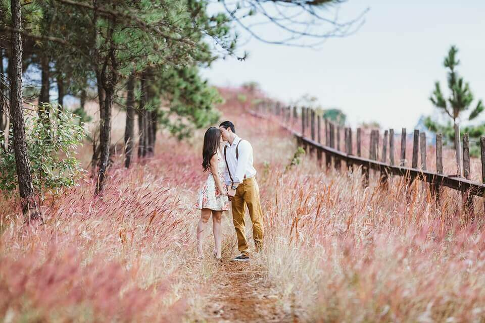 couple kissing in the field