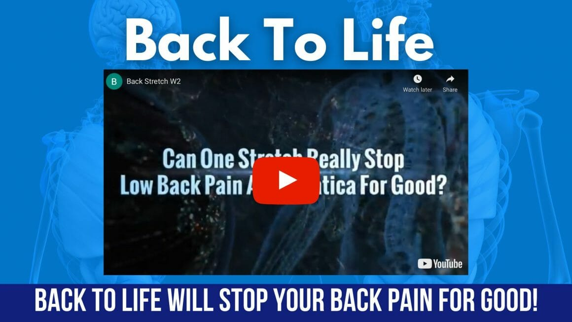 Back to Life Back to Life Stop your Back Pain Now
