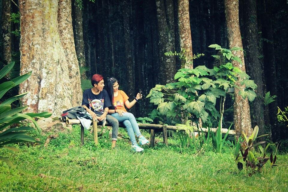 woods-1737684_960_720